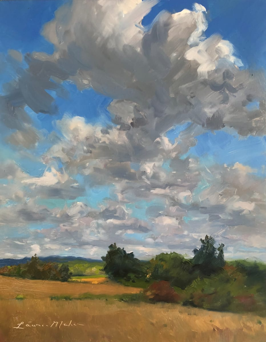 Clearing Skies Over Cold Brook Reserve by Laurie Maher