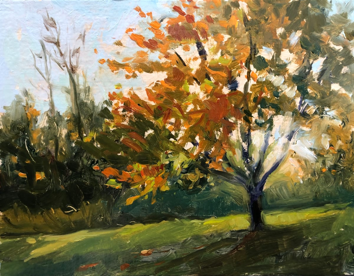 Sunlight Through Trees by Laurie Maher