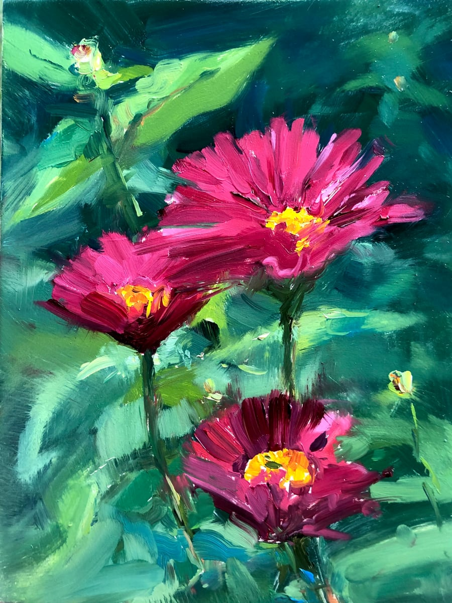 Magenta Daises by Laurie Maher