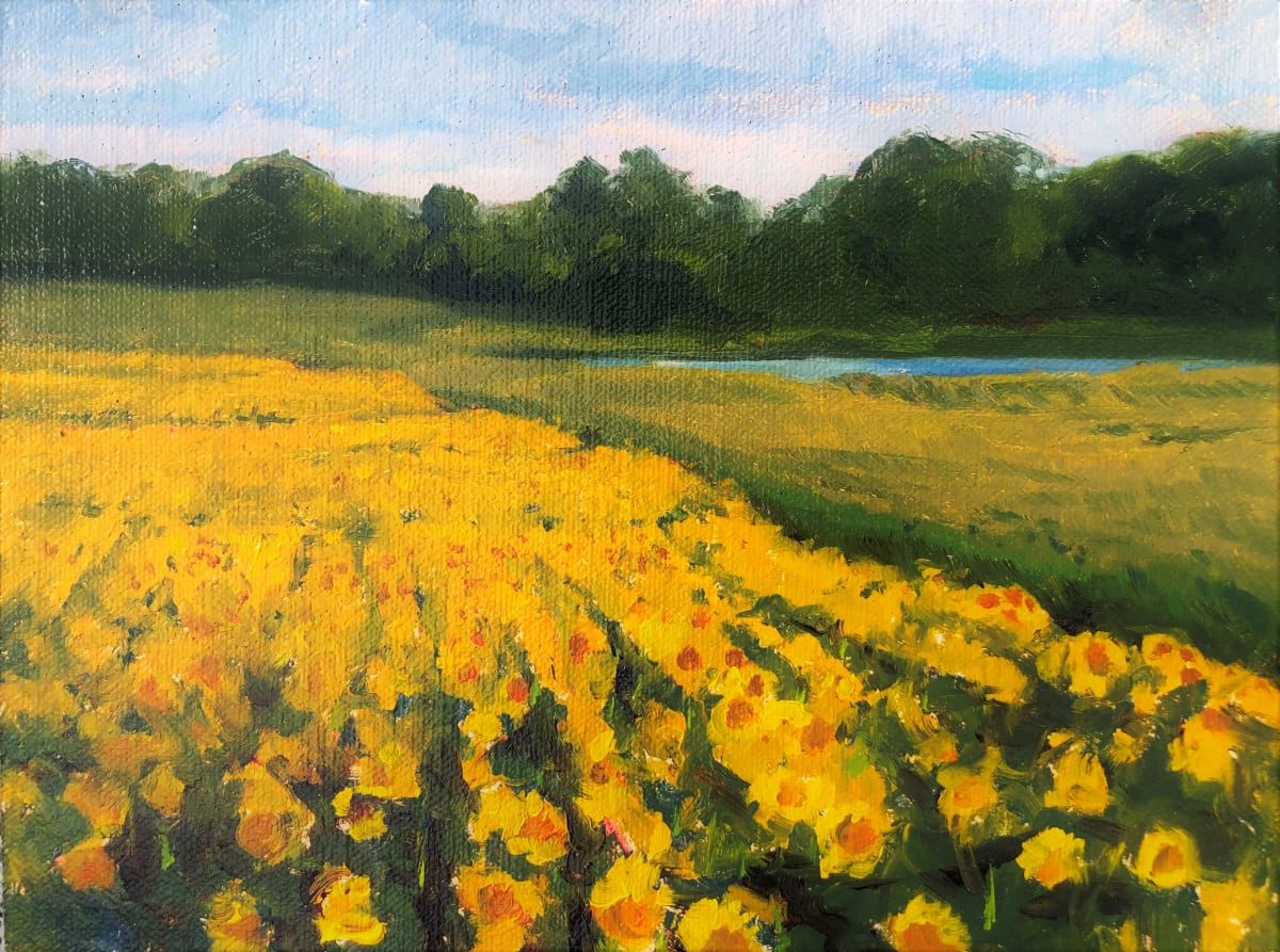 Sunflower Fields by Laurie Maher