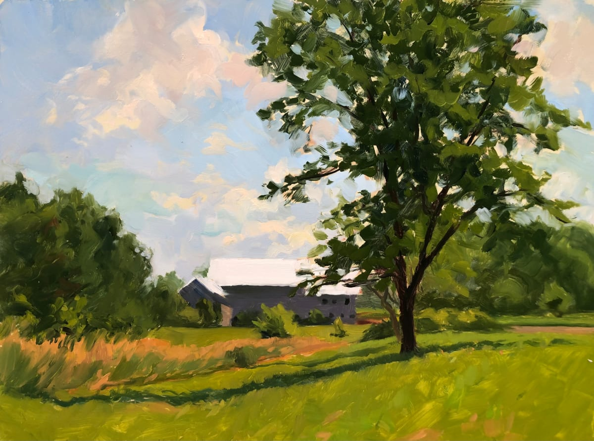 Summer Fields by Laurie Maher