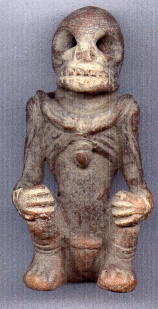 Pre-Columbian Skeleton Tairona culture by Unknown