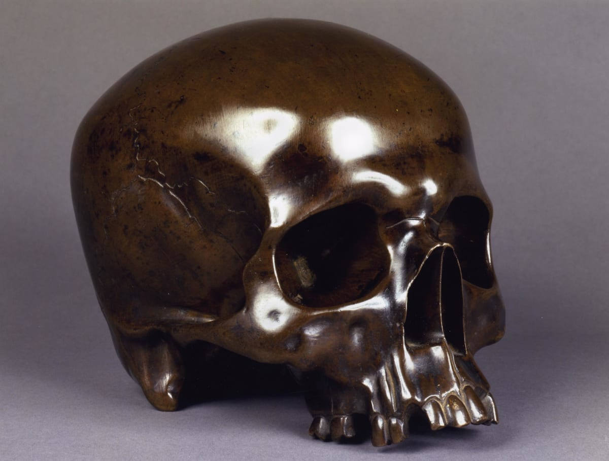 Skull, Florence, Italy by Unknown