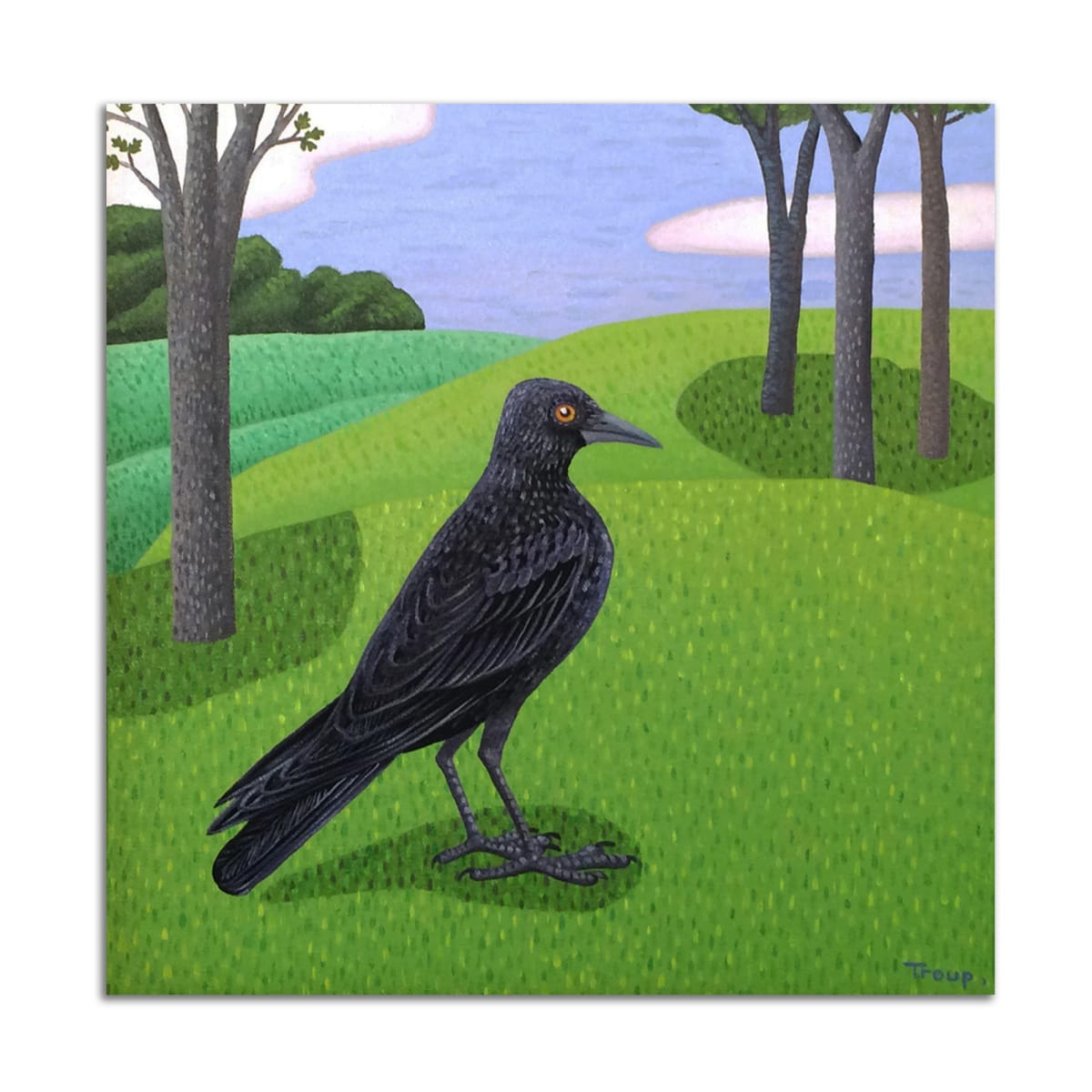 Black Bird by Jane Troup