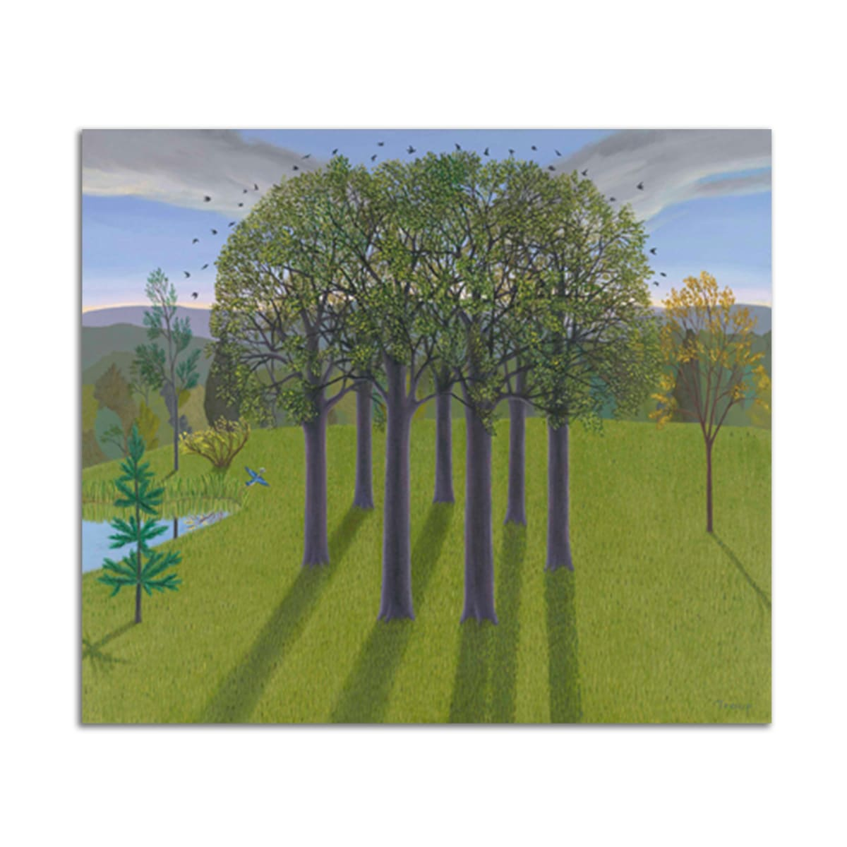 Circle Trees by Jane Troup