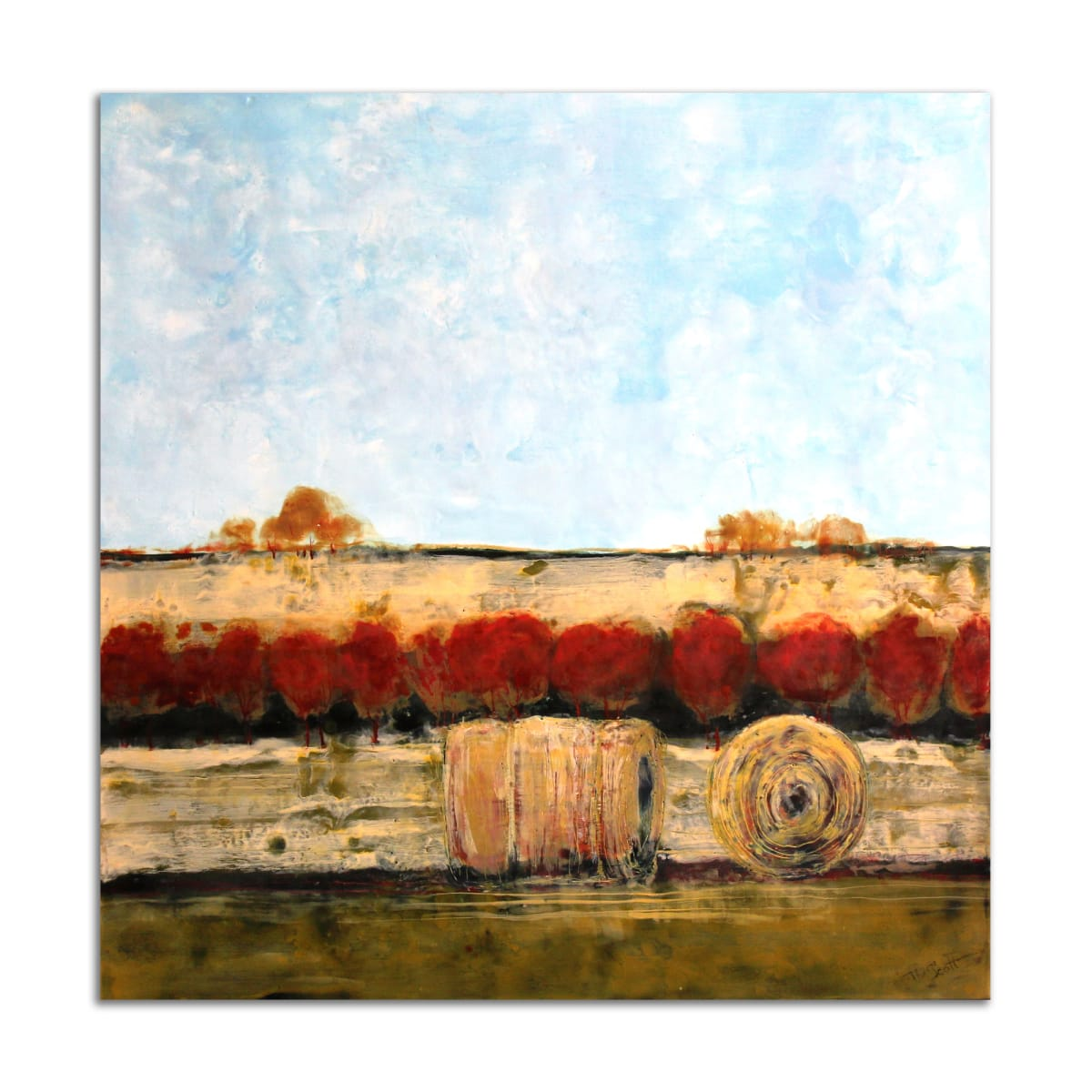 Roger's Farm by T.D. Scott