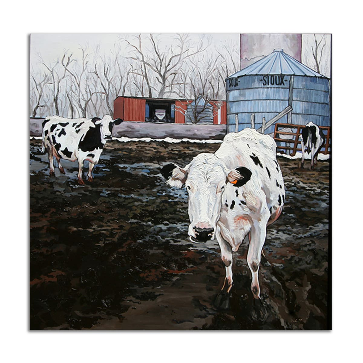 Sioux City Cows by Jared Gillett