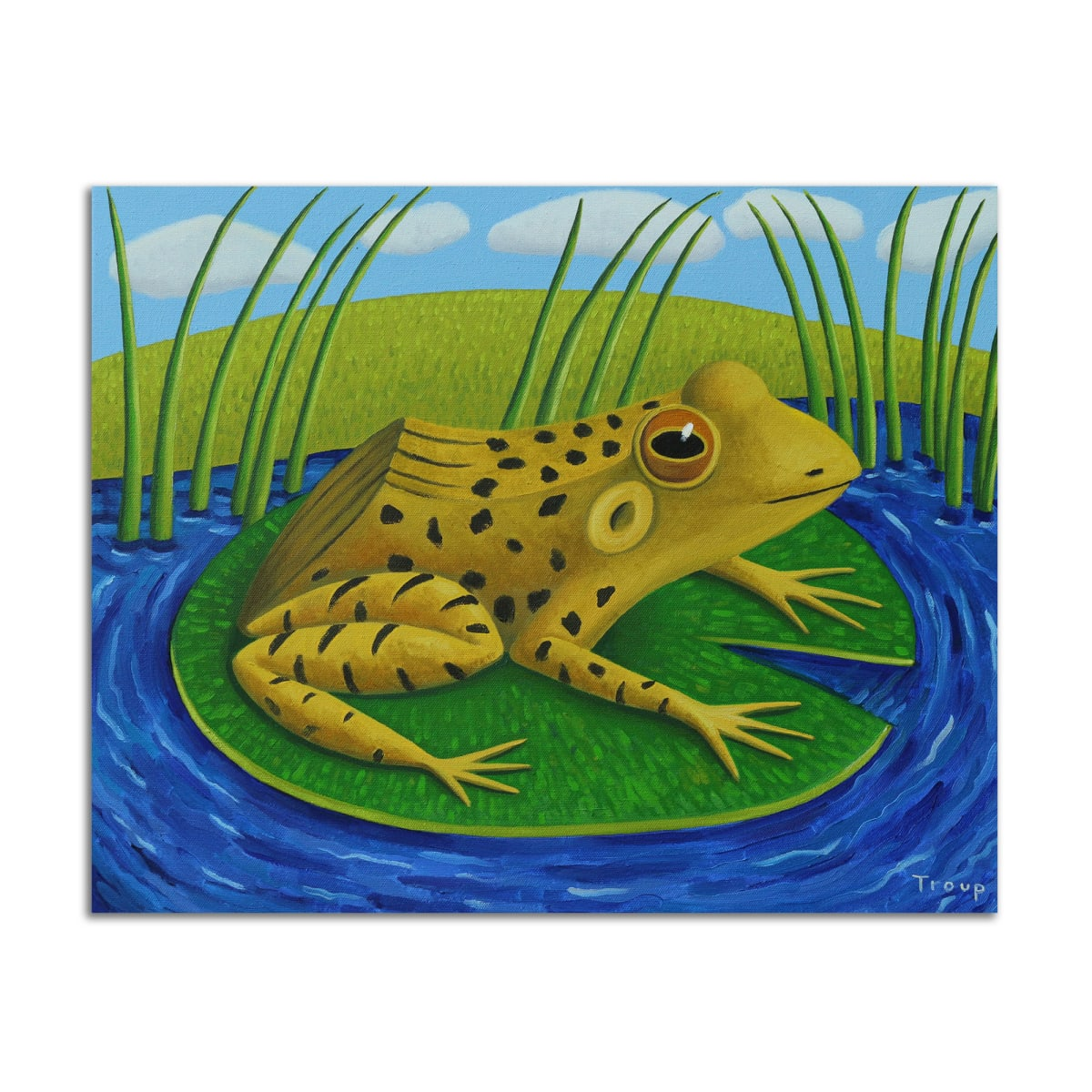The Frog by Jane Troup