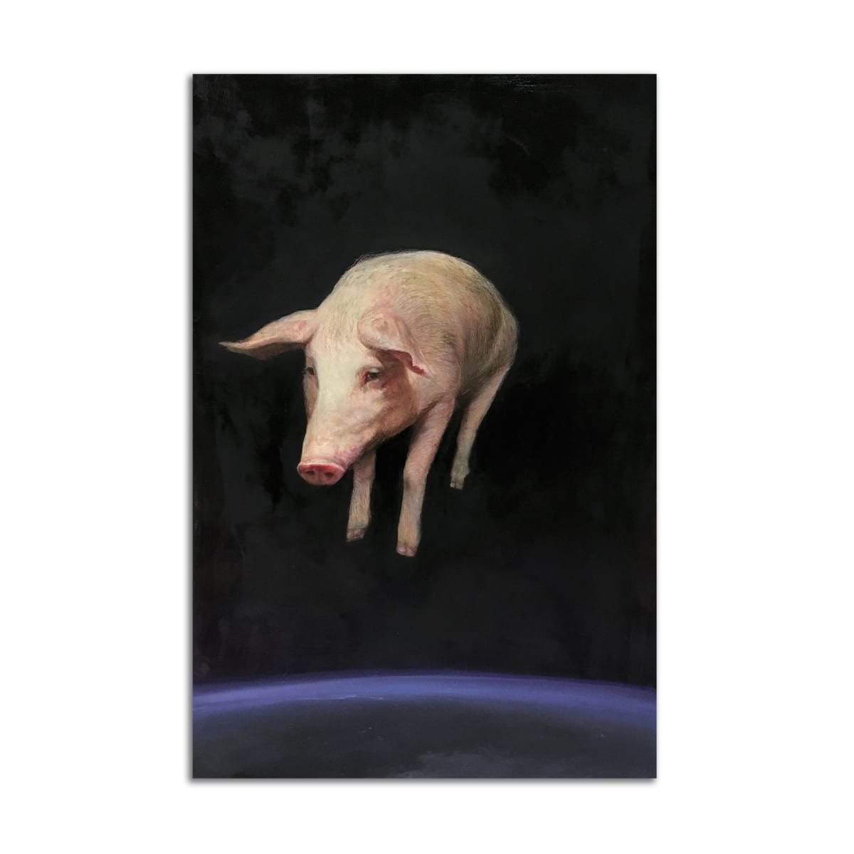 When Pigs… by Brad Noble