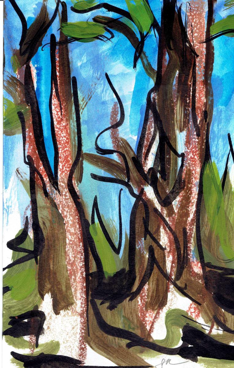 Redwoods XII by Sonya Kleshik