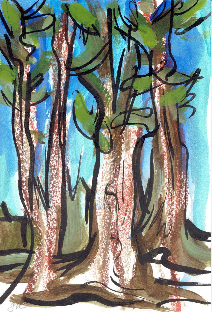 Redwoods XI by Sonya Kleshik