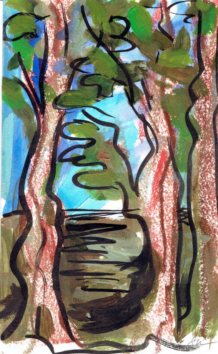 Redwoods X by Sonya Kleshik