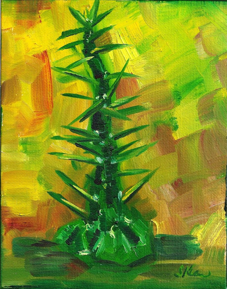 Mini Tree Succulent by Sonya Kleshik