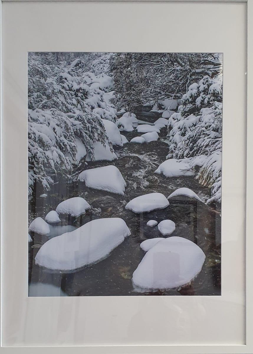 Cascades Snowy Stream by Wanda Lach