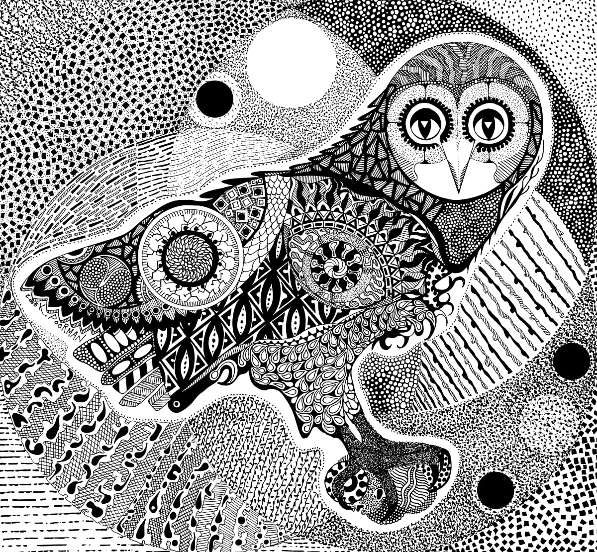 Night Owl by Kevin Poorman