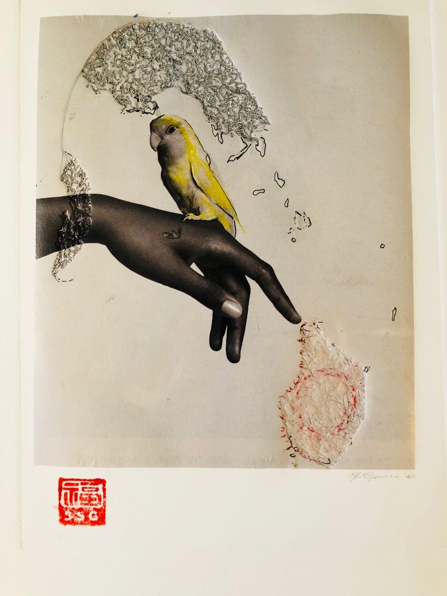 Canary by Susan Grucci