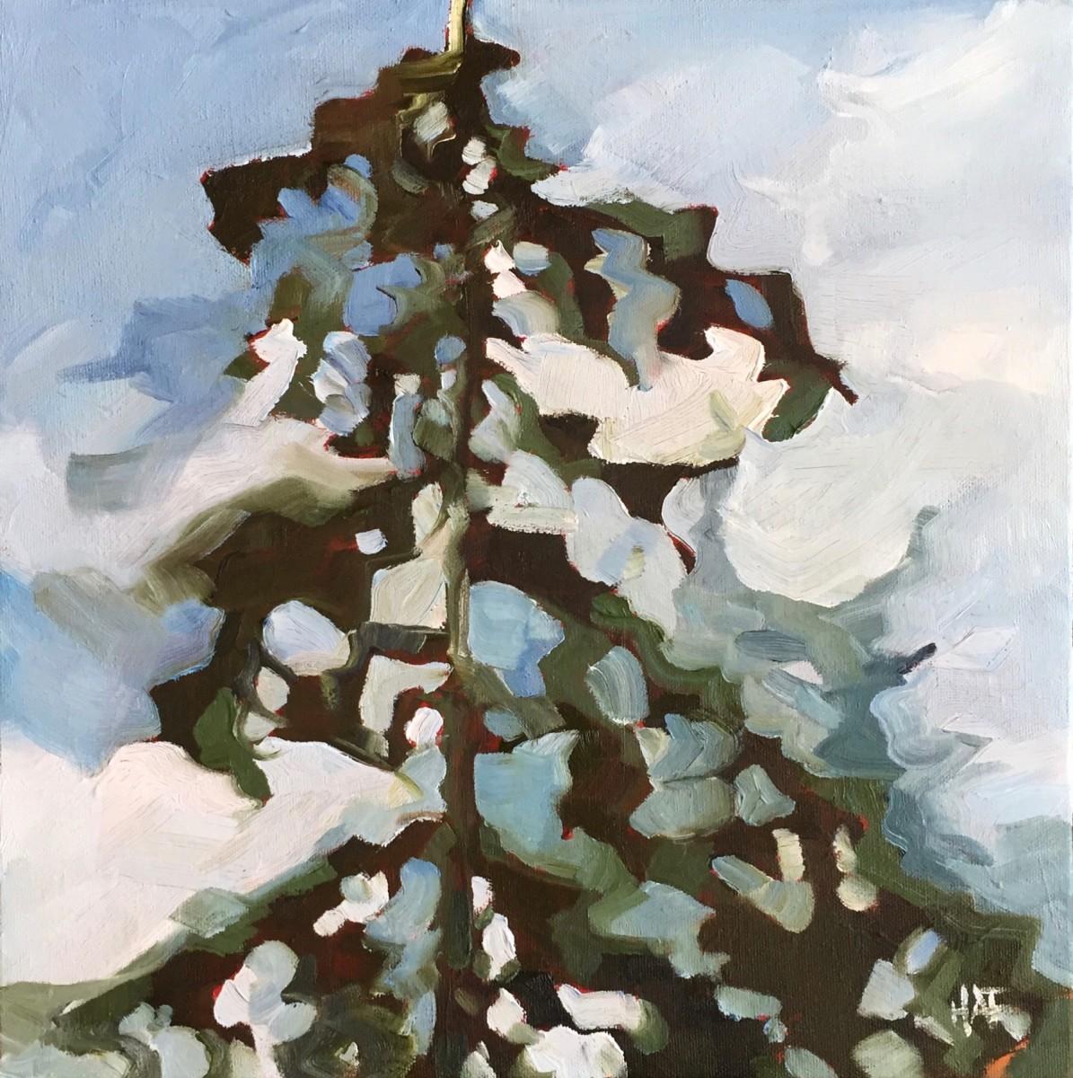 Upward Pine