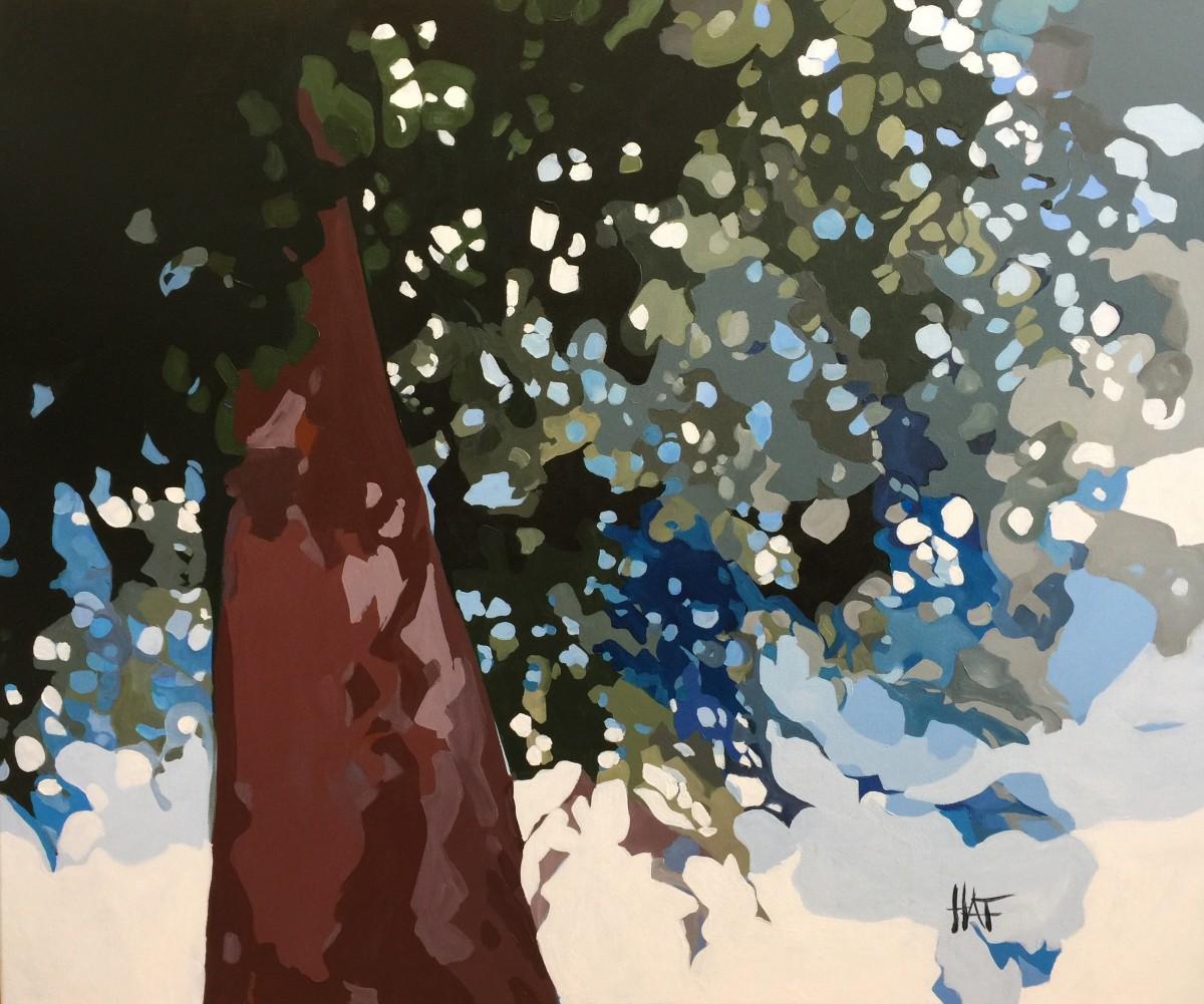 Pine Fall 4 by Holly Ann Friesen
