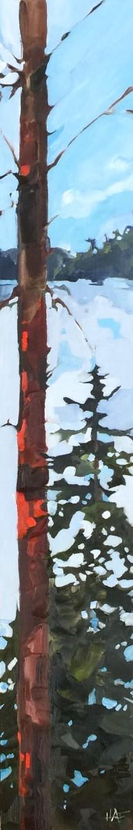 Lake through Pine 2 by Holly Ann Friesen