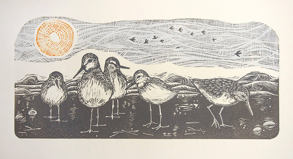 The Sandpipers' Beach by Carolyn Howse