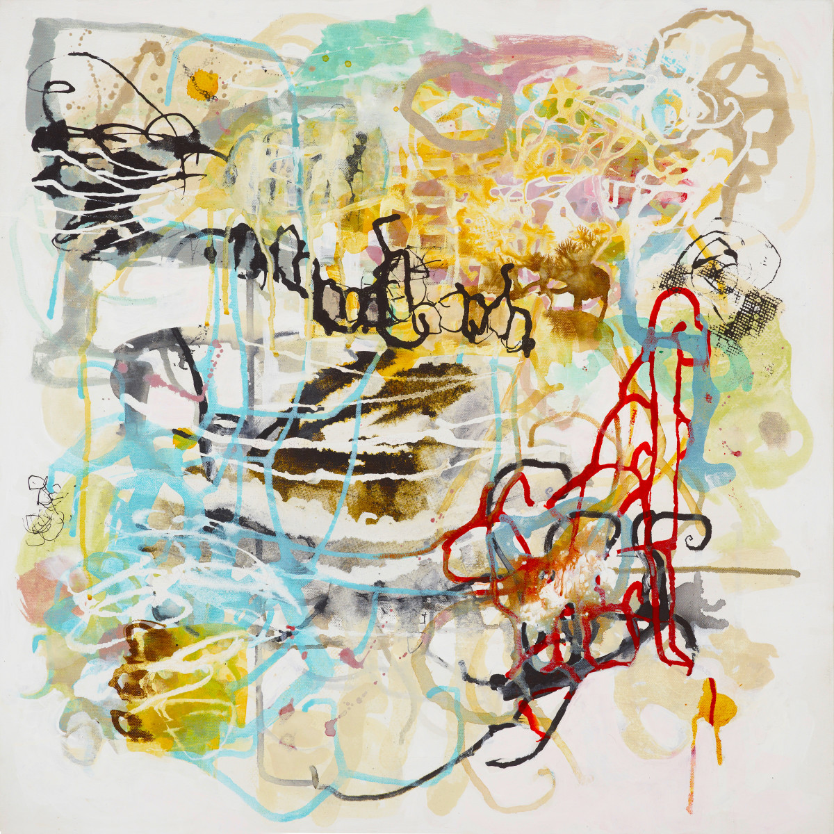 Tangled Mapping.2 by Barbara Fisher