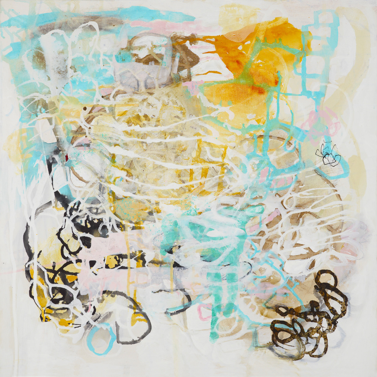 Tangled Mapping.1 by Barbara Fisher