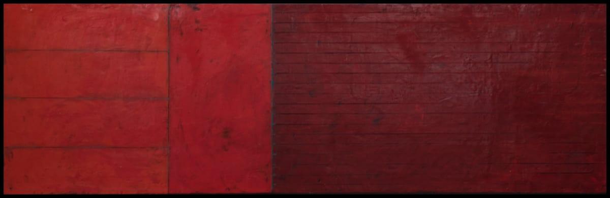 Red Flag by Graceann Warn