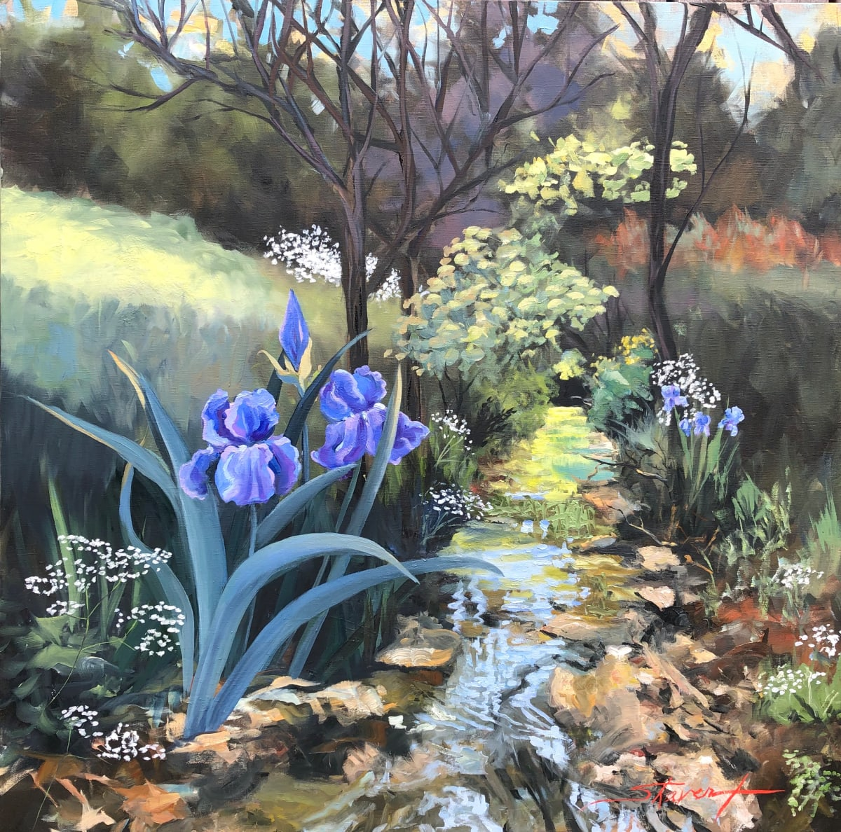 Iris Glory by Sharon Rusch Shaver