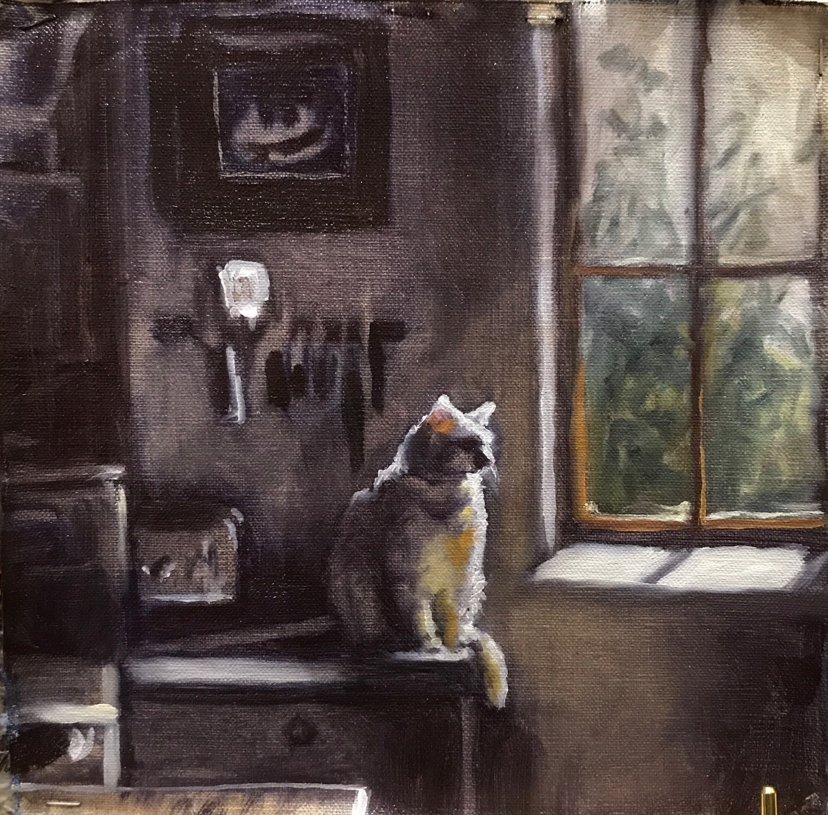 The Dawn Cat by Sharon Rusch Shaver