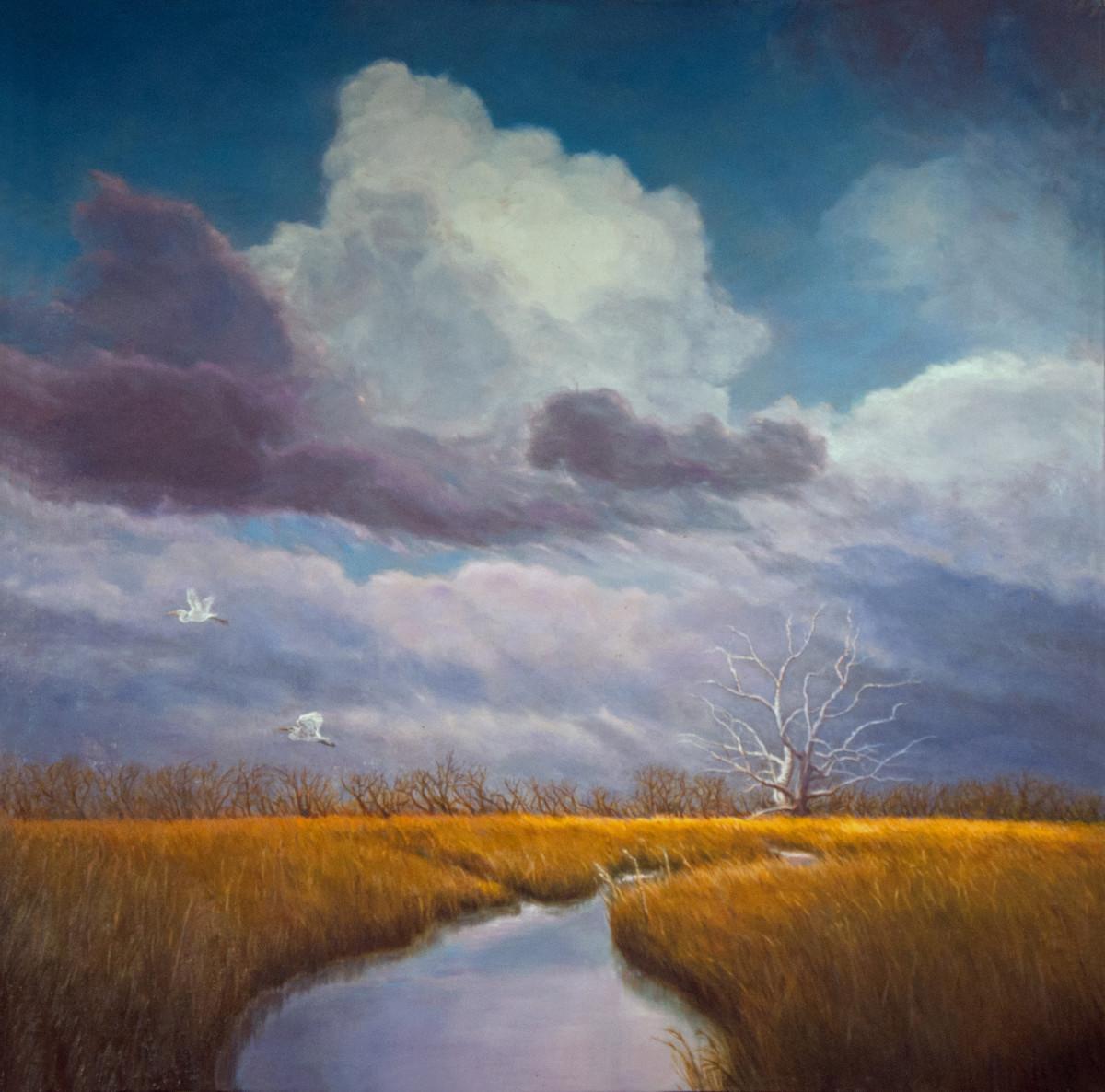 Cloudburst Over Marsh
