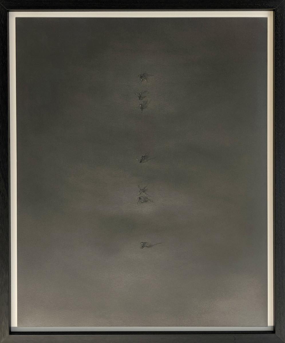 FlightPath xxxxi (NF) by Louisa Crispin