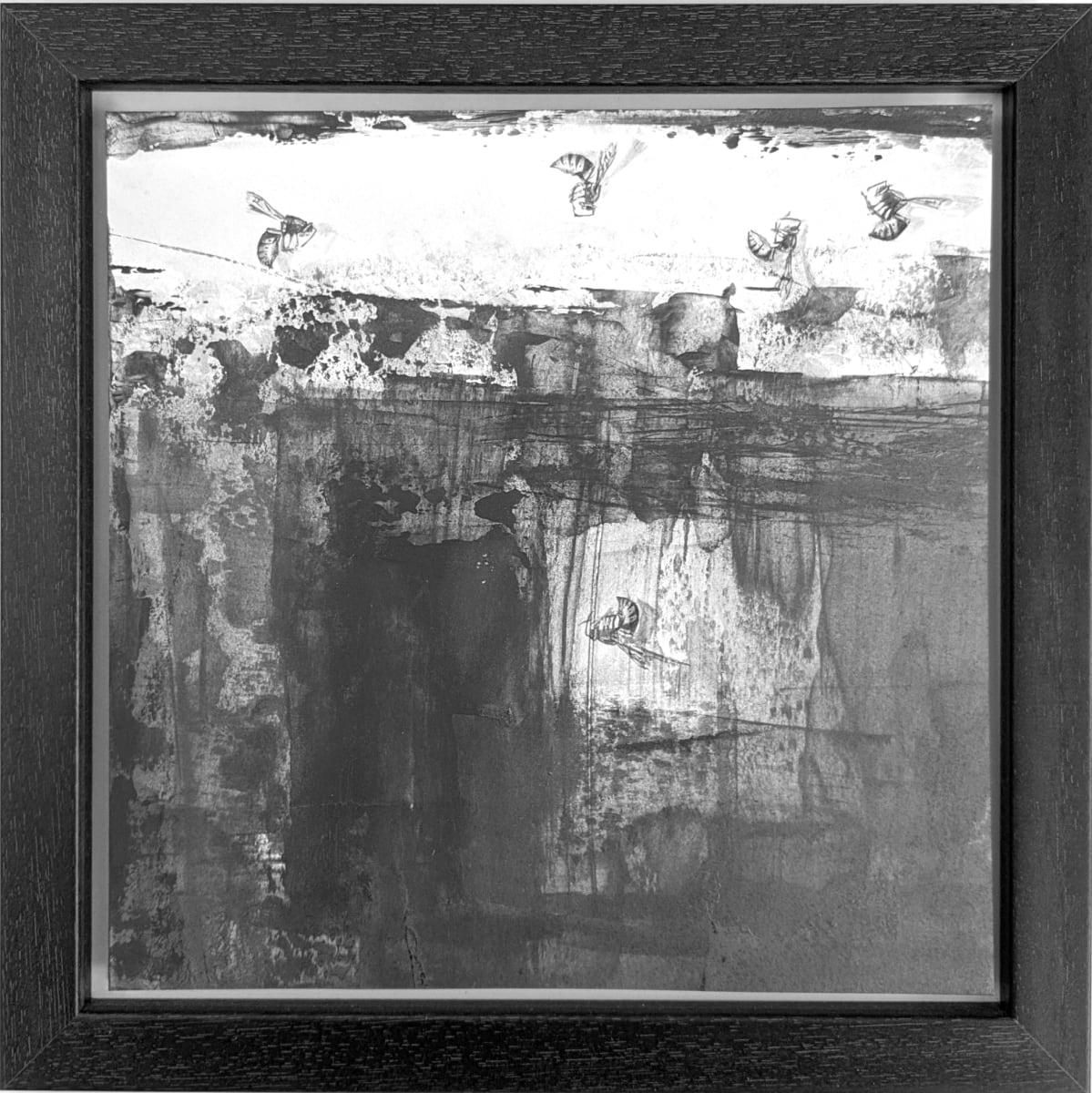 FlightPath lix by Louisa Crispin