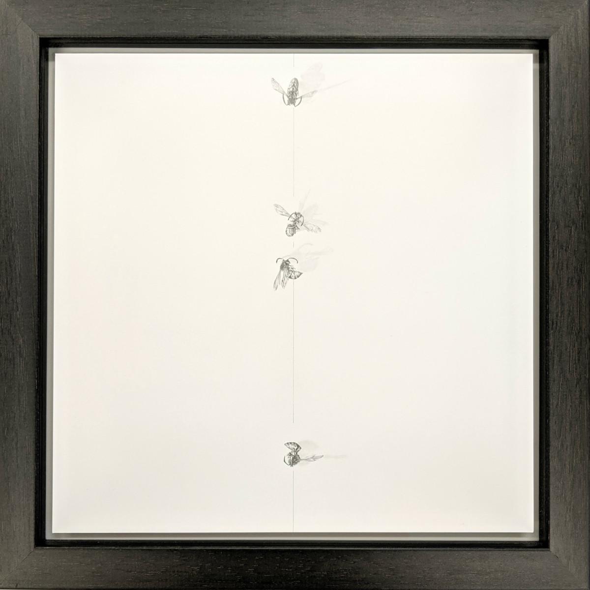 FlightPath xxxvi by Louisa Crispin