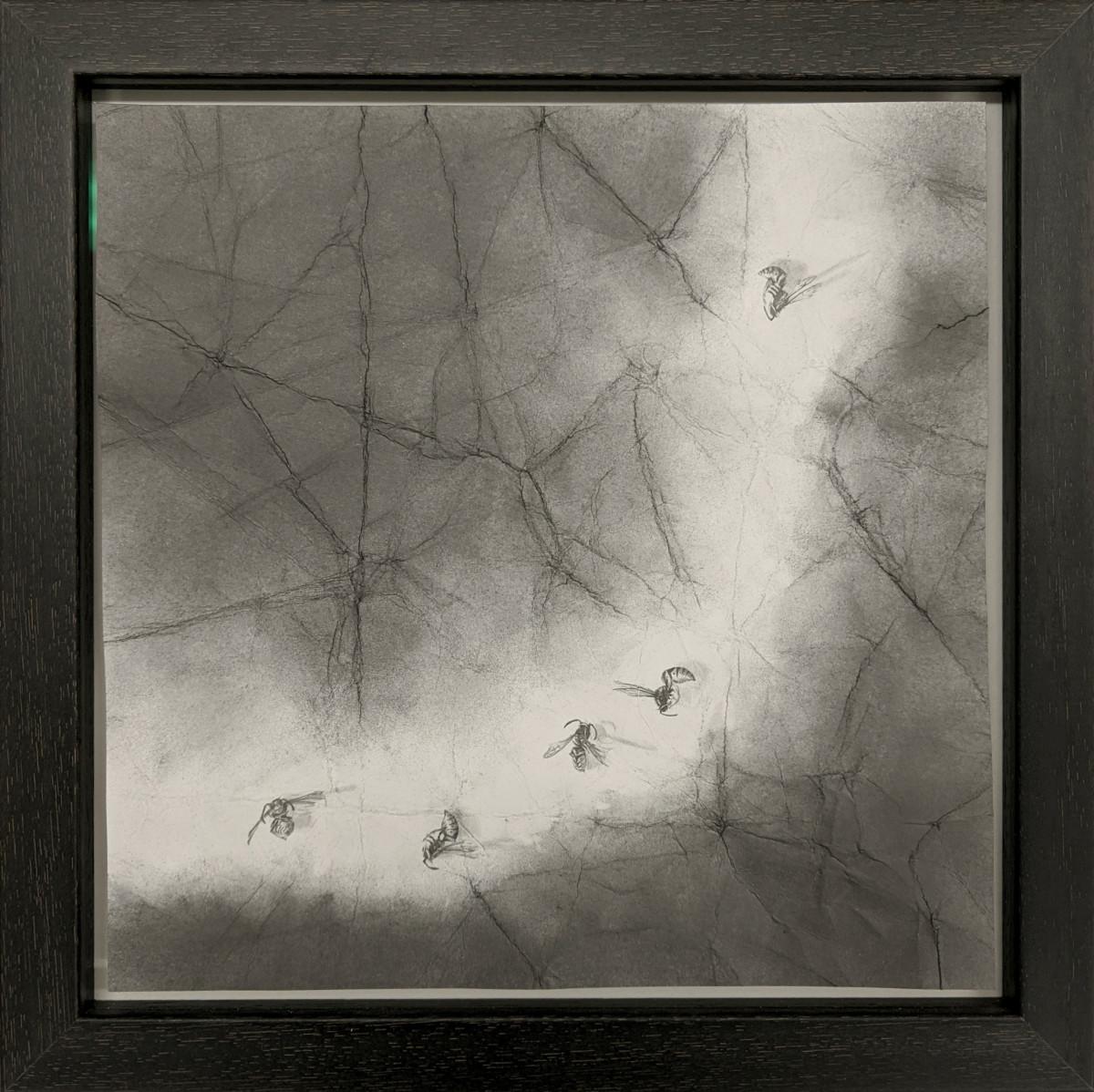 FlightPath xxxxx (l) by Louisa Crispin
