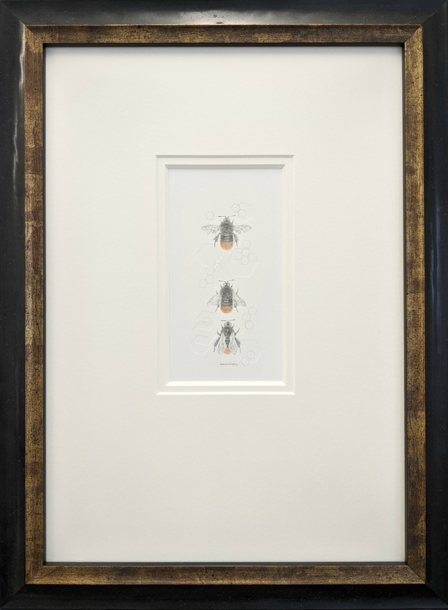 Red Tailed Bumble Bee 3.22e by Louisa Crispin