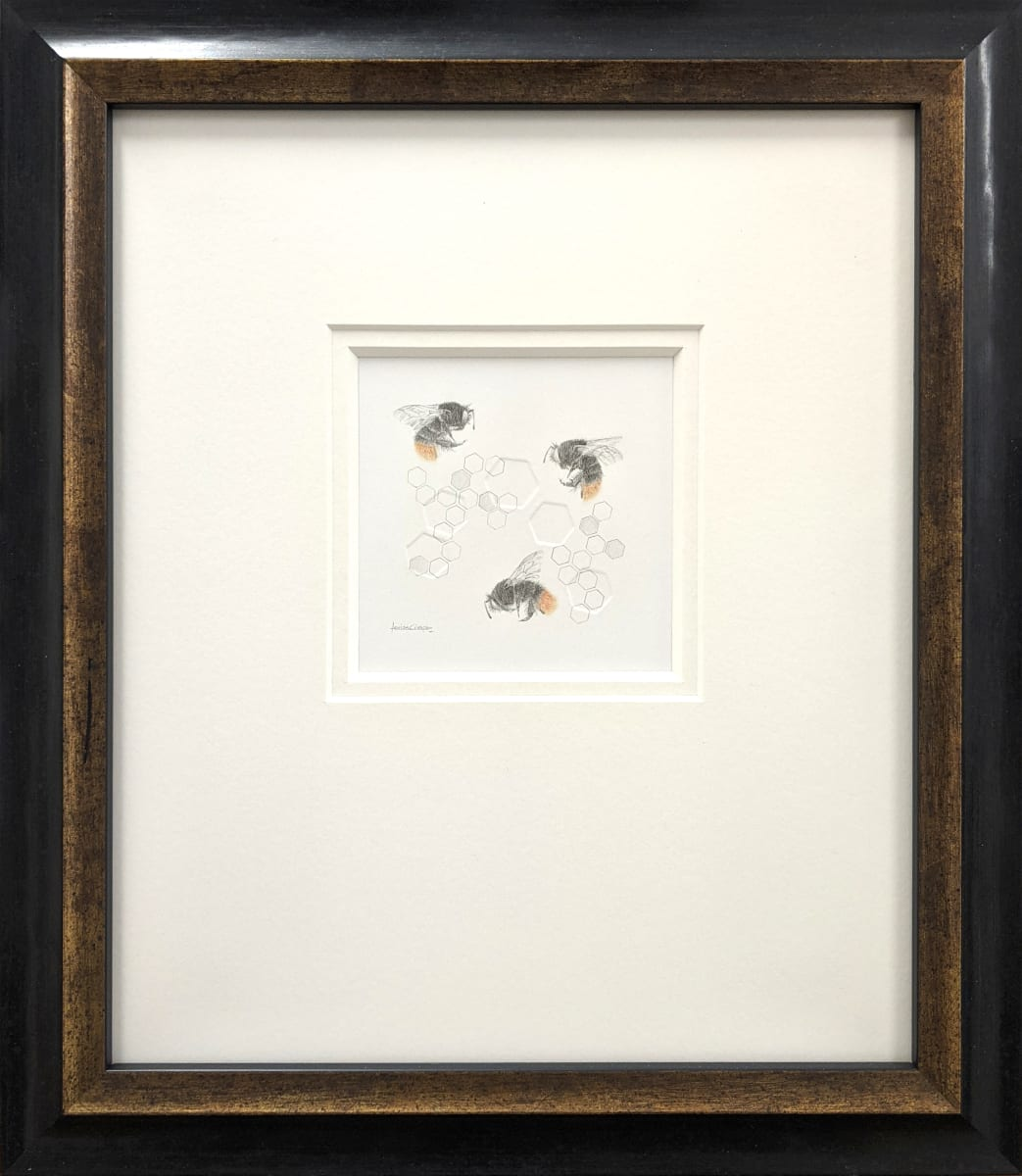 Red tailed BumbleBee 3.35se by Louisa Crispin