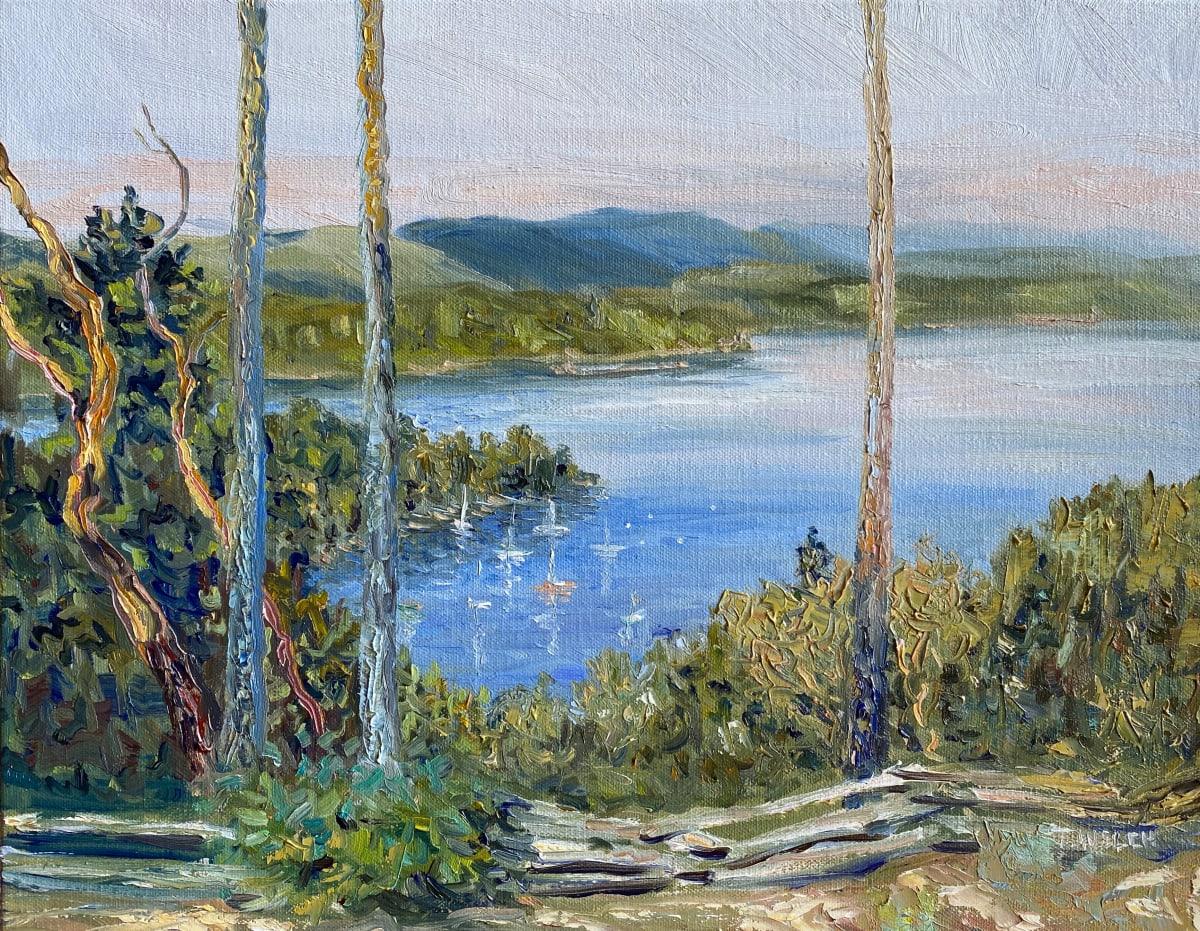 Morning View Above Village Bay by Terrill Welch