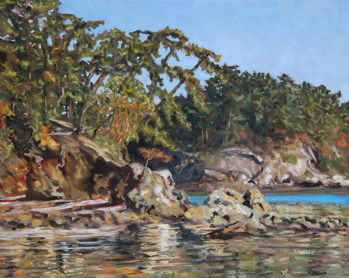 Bennett Bay Afternoon by Terrill Welch