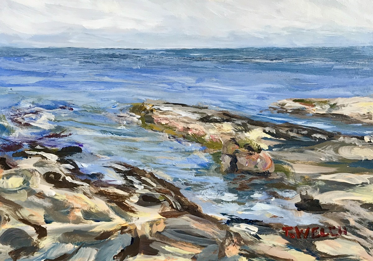 Reach out into the Salish Sea by Terrill Welch