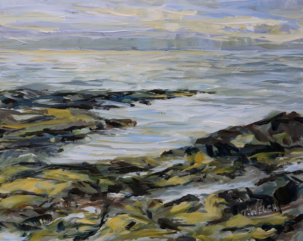Into the Sun Reef Bay study by Terrill Welch
