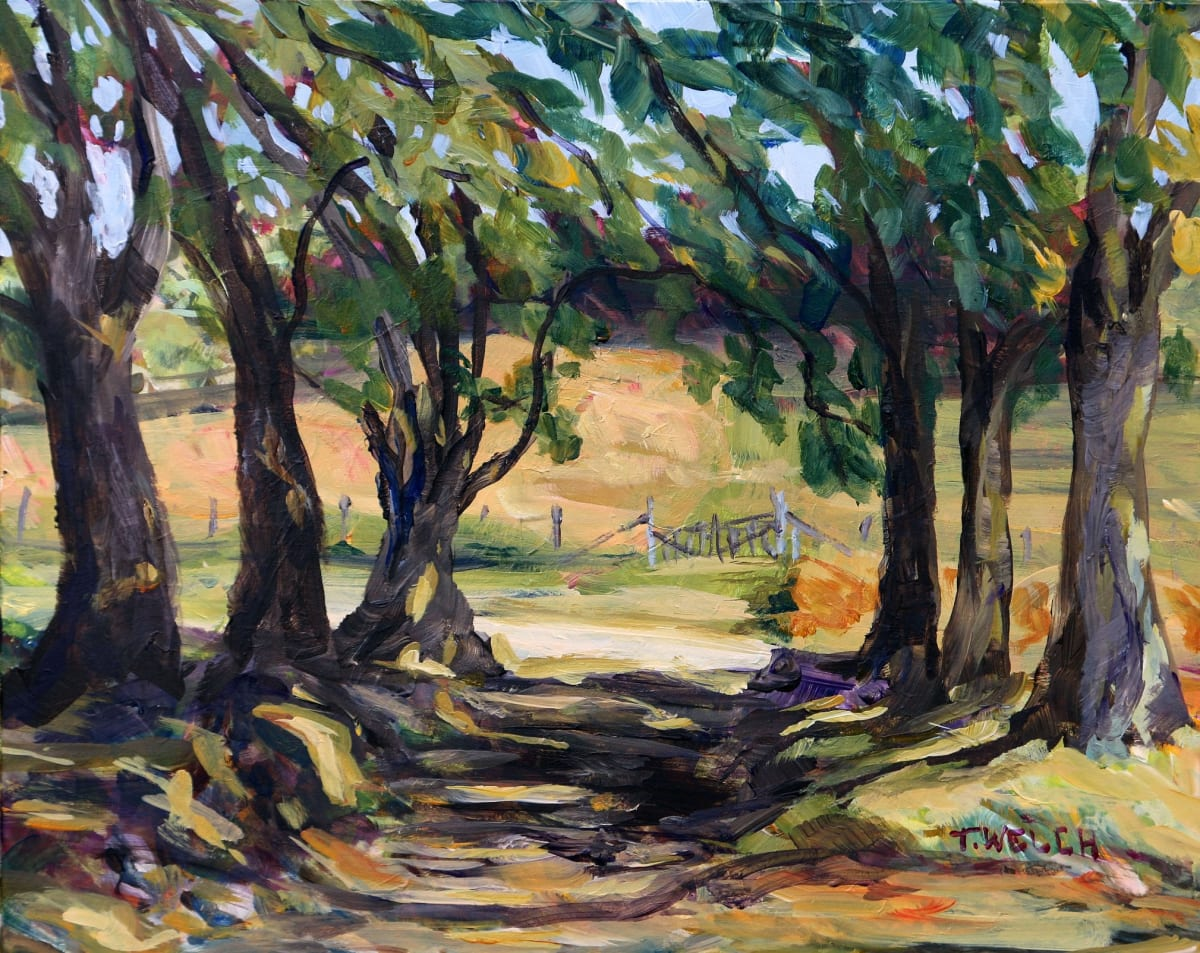 Maple Tree Edged Summer Morning by Terrill Welch