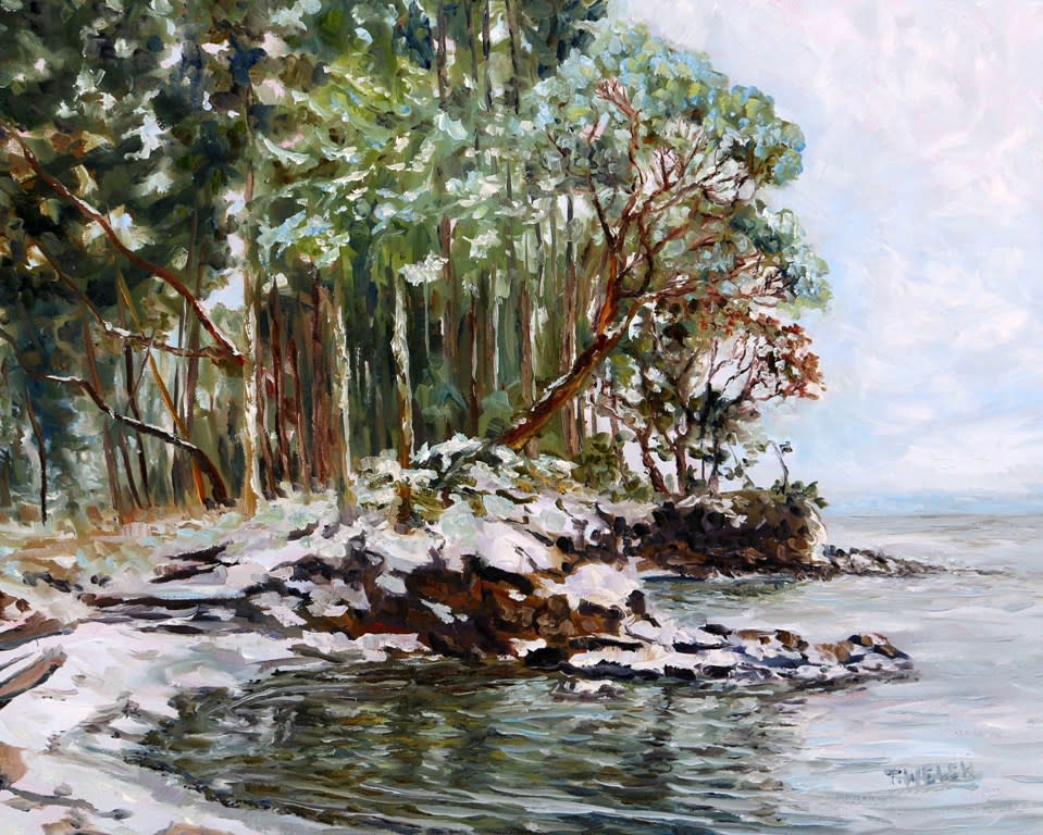 Oyster Bay Mayne Island BC with fresh snow by Terrill Welch