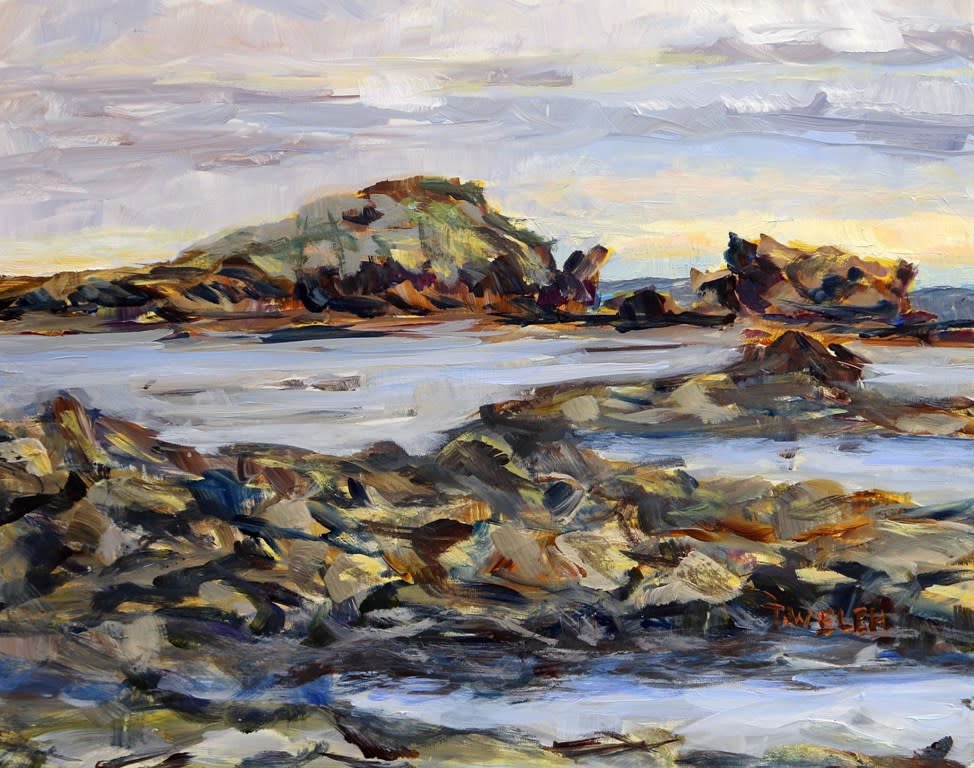 Oyster Bay Morning Rain by Terrill Welch