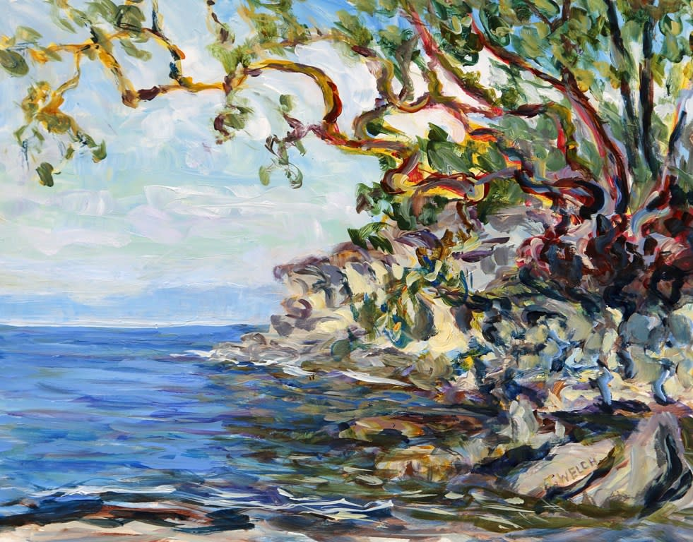 Sea and Shore study by Terrill Welch