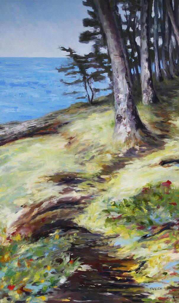 Seaside Mayne Island by Terrill Welch