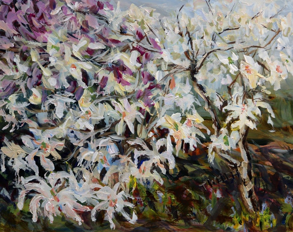Star Magnolia with Plum Tree by Terrill Welch
