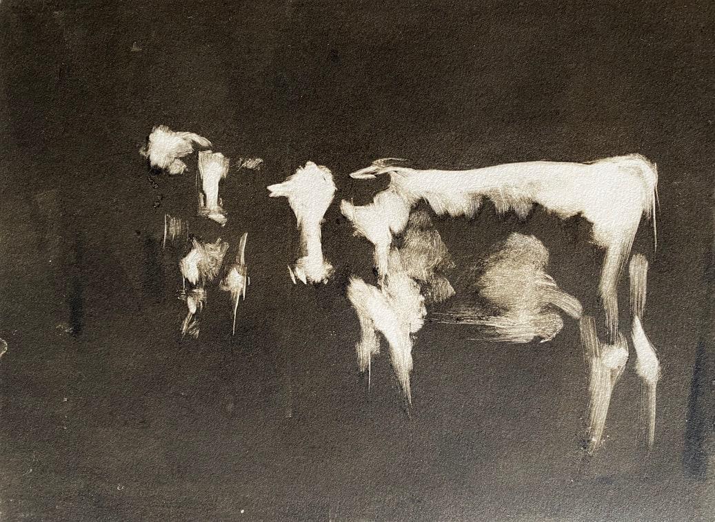 Cows monotype by Philine van der Vegte