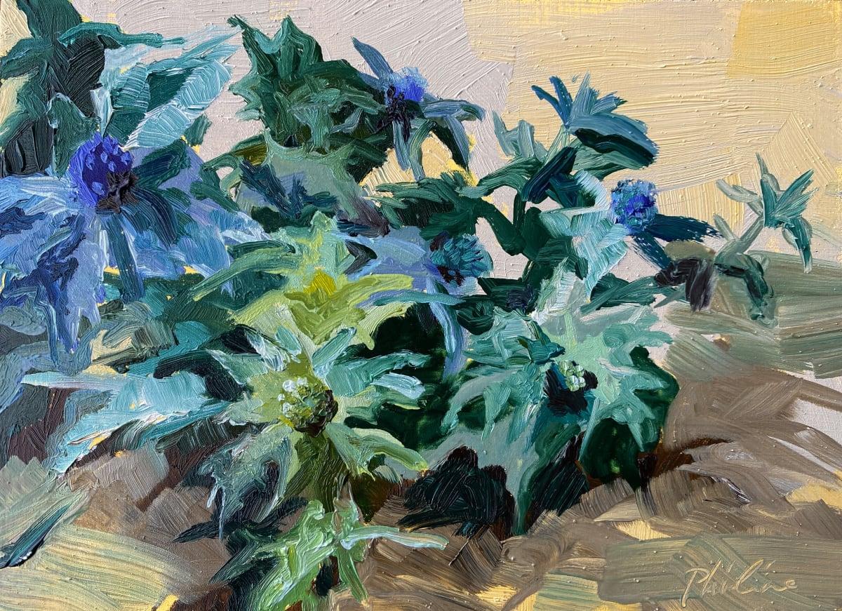 Zeedistel (Sea holly) by Philine van der Vegte