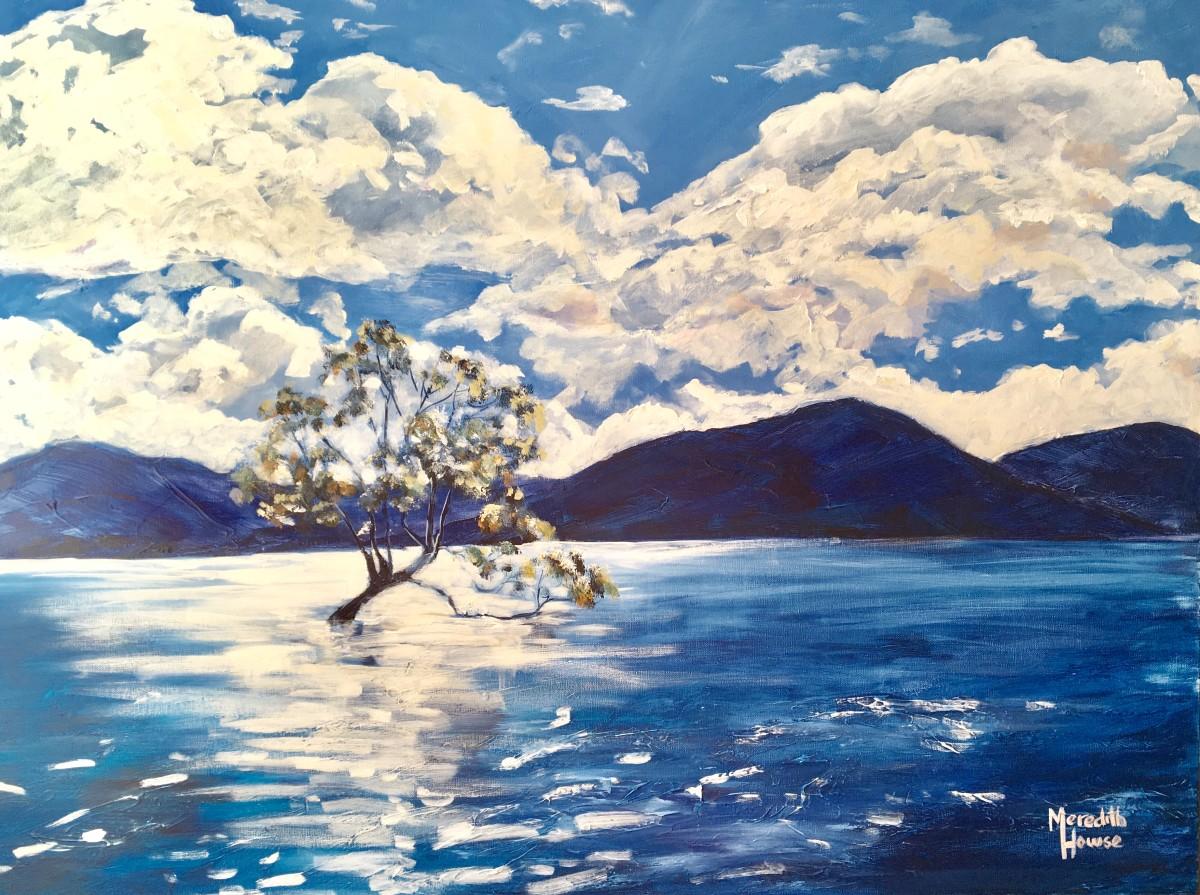 Wanaka Tree by Meredith Howse