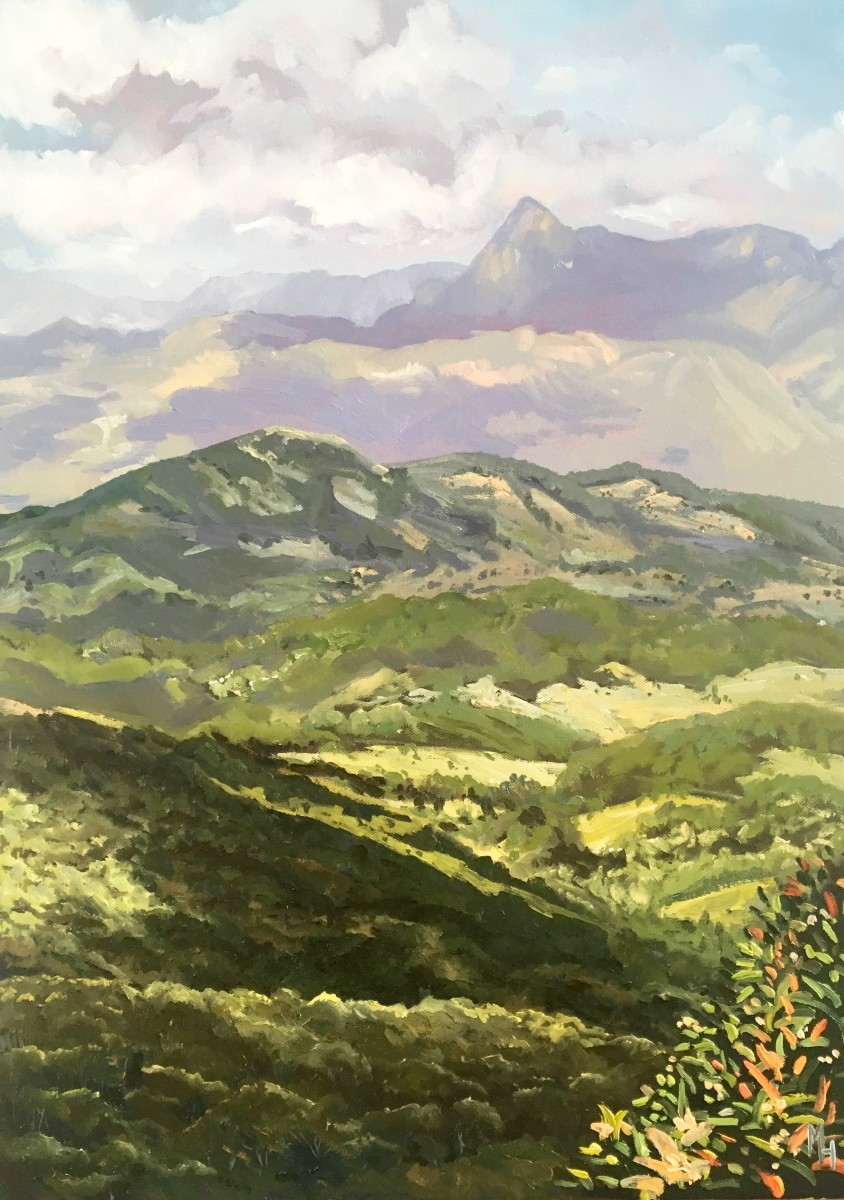 Mount Warning by Meredith Howse